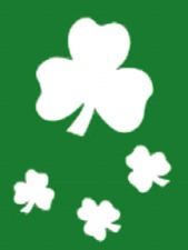 Irish Garden  Flags